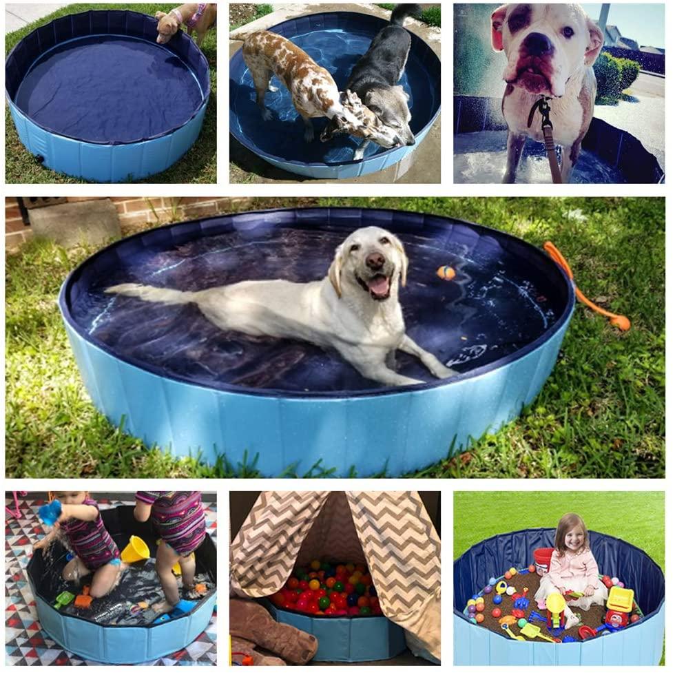 dog-pool.png