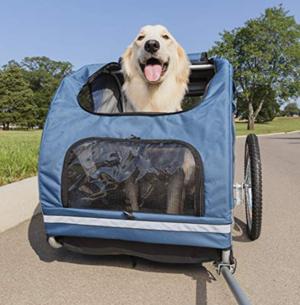 dog-cart.png
